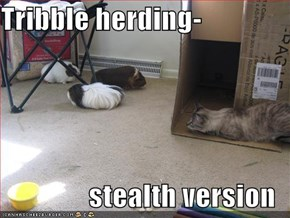 Tribble herding-  stealth version