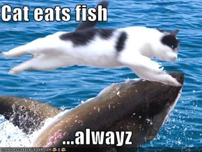 Cat eats fish  ...alwayz