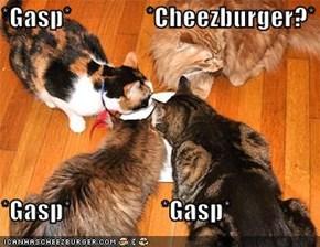 *Gasp*               *Cheezburger?*  *Gasp*                  *Gasp*