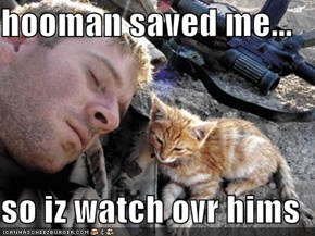 hooman saved me...  so iz watch ovr hims