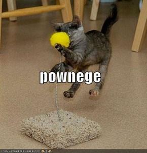 pownege