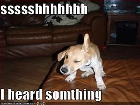 ssssshhhhhhh  I heard somthing