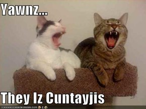 Yawnz...  They Iz Cuntayjis