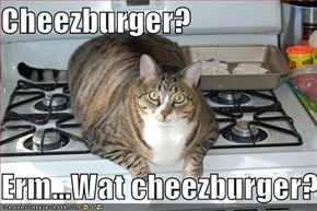 Cheezburger?  Erm...Wat cheezburger?
