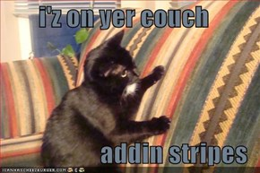 i'z on yer couch  addin stripes