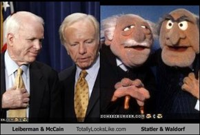 Leiberman & McCain Totally Looks Like Statler & Waldorf