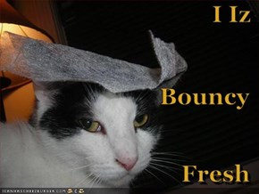 I Iz Bouncy Fresh