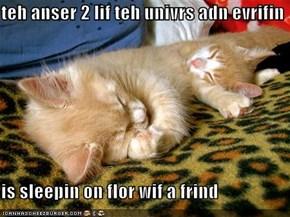 teh anser 2 lif teh univrs adn evrifin  is sleepin on flor wif a frind