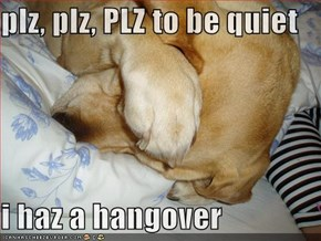 plz, plz, PLZ to be quiet  i haz a hangover