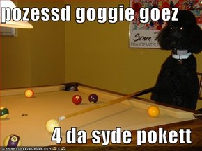 pozessd goggie goez  4 da syde pokett
