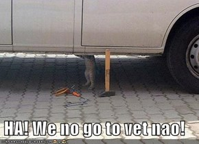 HA! We no go to vet nao!