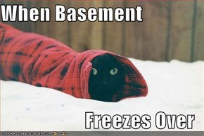 When Basement  Freezes Over