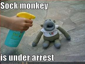 Sock monkey  is under arrest