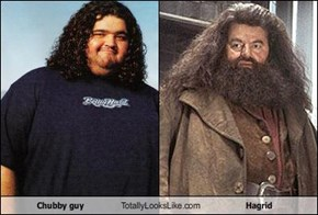 Chubby guy Totally Looks Like Hagrid