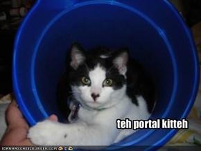 teh portal kitteh