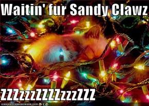 Waitin' fur Sandy Clawz  ZZZzzzZZZZzzzZZZ