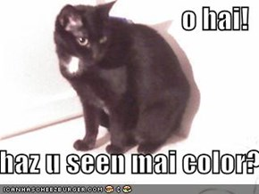 o hai!     haz u seen mai color?
