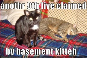 anothr 9th live claimed  by basement kitteh