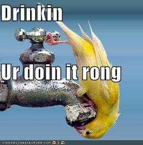 Drinkin Ur doin it rong