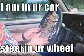 I am in ur car  steerin ur wheel