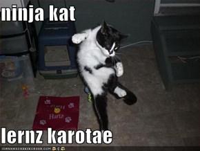 ninja kat  lernz karotae