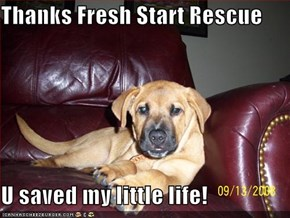 Thanks Fresh Start Rescue  U saved my little life!