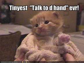 "Tinyest  ""Talk to d hand"" evr!"