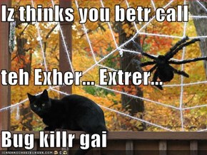 Iz thinks you betr call  teh Exher... Extrer... Bug killr gai