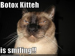 Botox Kitteh  is smiling!!
