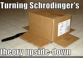 Turning Schrodinger's   theory upside-down