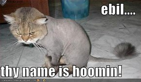 ebil....  thy name is hoomin!