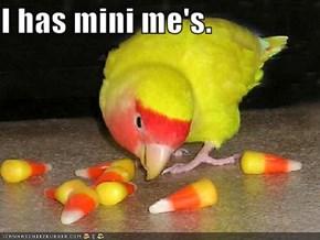 I has mini me's.