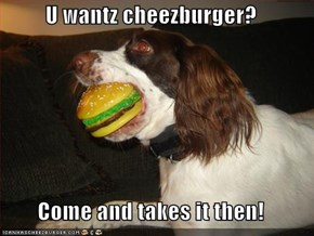 U wantz cheezburger?  Come and takes it then!