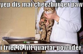 yep dis mai cheezburger paw  i triez to lift quartar pownder