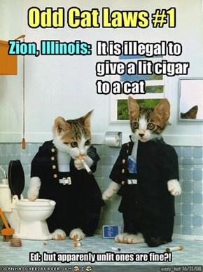 Odd Cat Laws #1