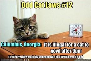 Odd Cat Laws #12