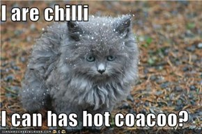 I are chilli  I can has hot coacoo?