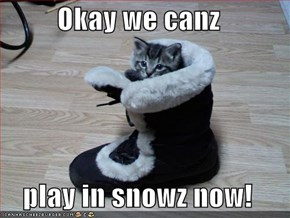 Okay we canz  play in snowz now!