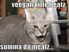 veegan kitteh eatz  summa da meatz...