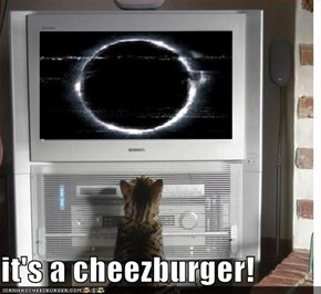it's a cheezburger!