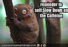 reminder to self:Slow Down on the Caffeine