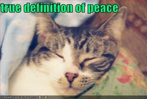 true definition of peace
