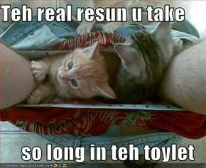 Teh real resun u take  so long in teh toylet