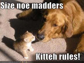 Size noe madders  Kitteh rules!