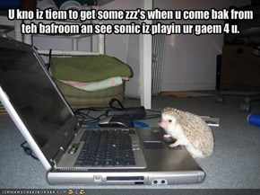 U kno iz tiem to get some zzz's when u come bak from teh bafroom an see sonic iz playin ur gaem 4 u.
