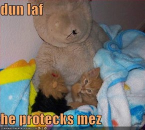 dun laf   he protecks mez