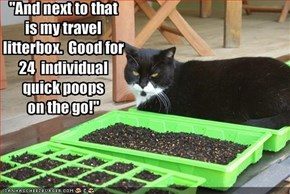"""And next to that 