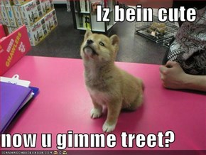 Iz bein cute  now u gimme treet?