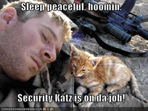 Sleep peaceful, hoomin.  Security Katz is on da job!
