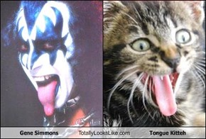 Gene Simmons Totally Looks Like Tongue Kitteh